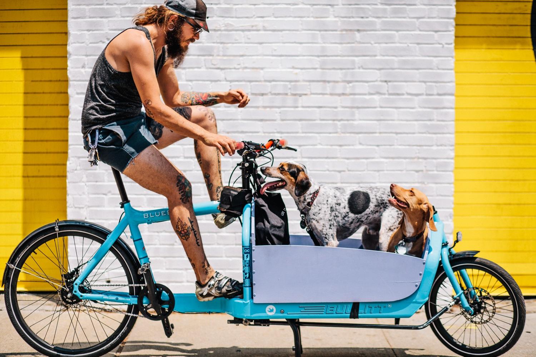 köpekli bisiklet