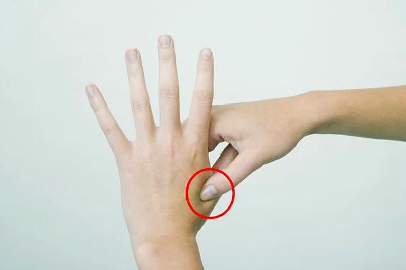 parmakların birleşme noktası